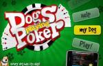 iOS игра Собачий Покер / Dogs Playing Poker
