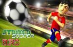 iOS игра Футбольный тренажер Euro 2012 / Striker Soccer Euro 2012